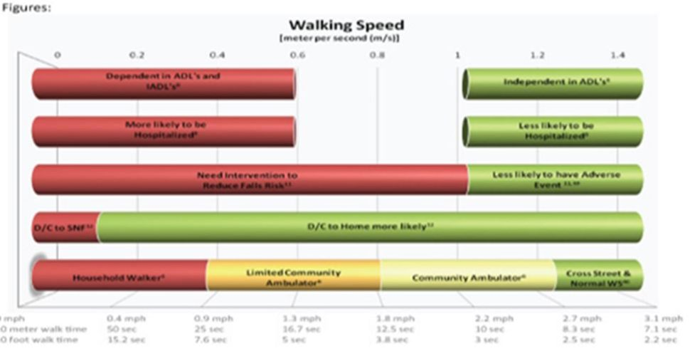 The Relationship between Gait Speed and Overall Health